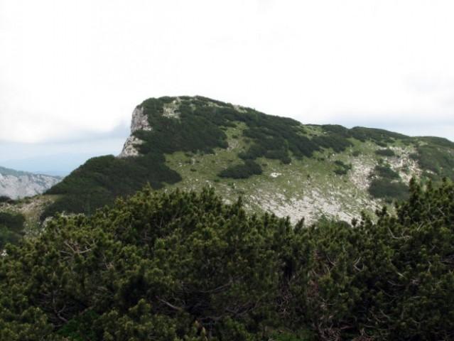 Razgledni Veliki Pršivec naju je spomil na Veliko Tičarico nad Logom v Trenti; tudi ta ima
