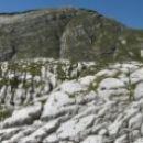 Prek škrapelj na greben nad Travnikovo dolino.