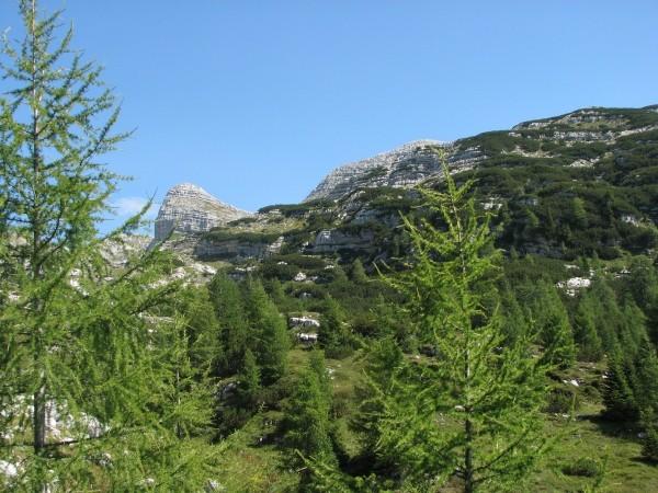 Po dolini navzgor. Levo Vršac, desno čez pobočje Rušja gleda golo Čelo.