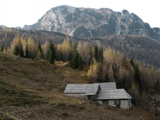 Planina Za skalo s Kaludrom v ozadju