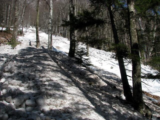 Eden od plazov na poti iz Kamniške Bistrice proti Kamniškem sedlu.