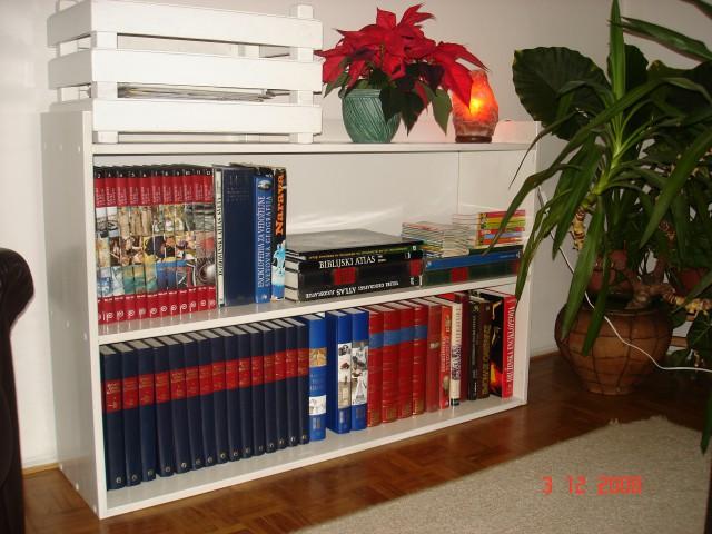 Moževa izdelka - gajbica za časopise in regal za knjige  (je roj.3.dec.kot Prešeren)