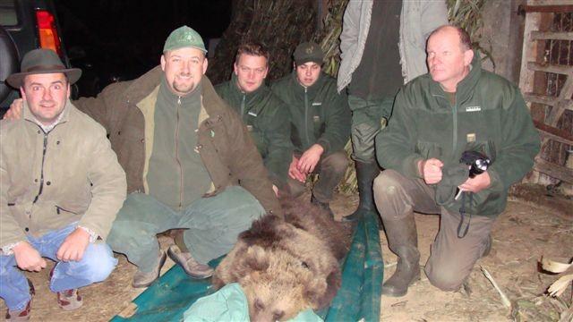 Lov na medveda - foto