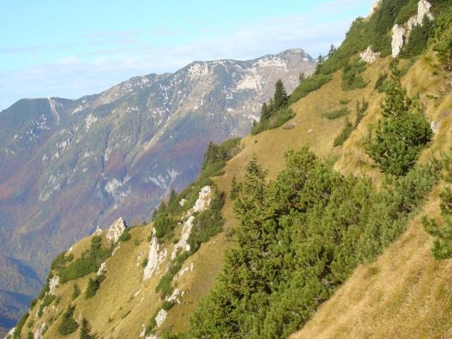 Velika planina cez Vrtlase - foto