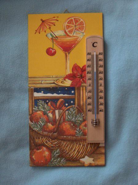 termometer enmu stricu za 50 poletij in zim