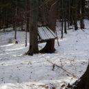 Zapuscena krmilnica nekje v gozdu na poti domov :)