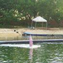 Ampak mala laguna na otoku, kjer prirejajo predstave z delfini, je najbrž čista ...