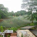 Pticji park poleg središča Kuala Lumpurja. Ostal je neobiskan  zaradi potencialno bolne pe