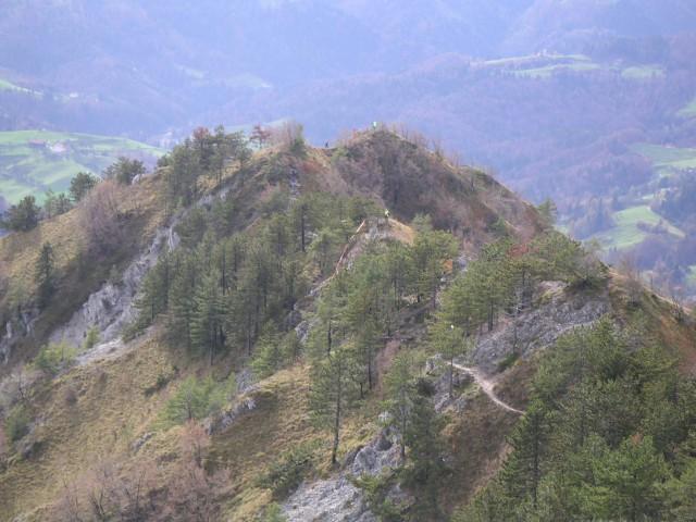 Gorski tek na Polhograjsko Grmado - foto