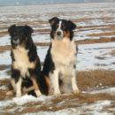 Urko, Bejba (desno)