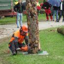 Gozdarska predstavitev Mirna peč