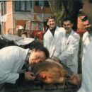 Damir Plavšić tijekom studiranja na veterini