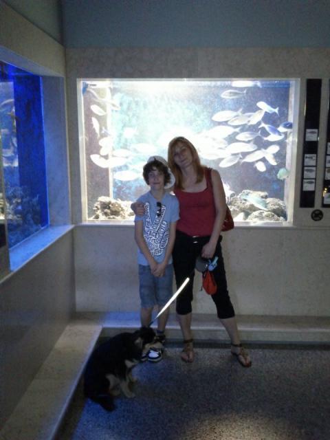 V akvariju v Piranu