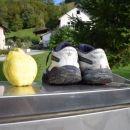 kutne - zavore in sadež
