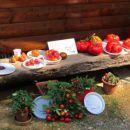 Orjaki in del razstave plodovk