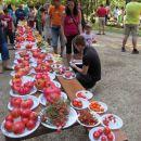Razstavna miza se je šibila pod težo rekordega števila sort paradižnika