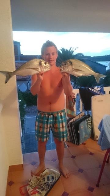 Ribe - foto