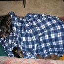 Spim obvezno pokrita!
