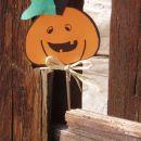 VESELA BUČA (Jesen na Kavčnikovi domačiji, 16.10.2005)