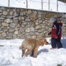 22.3.2008 mi mamo pa cca 20 centinov snegaaaaa na dvorišču