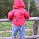 jaz sem velika punca in sama stojim na ograji:) Kmečki turizem Trebeljevo