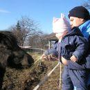 mali islandski konjički..komaj čakamo poletje, da jih bo Kaja lahko jahala