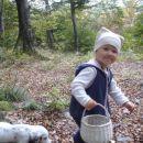 mali gobarki Kaja in Bolha v gozdu za našo bajto