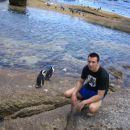 ges pa pingvina:)