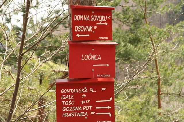 Govejek, Osolnik, 17.4.2006 - foto