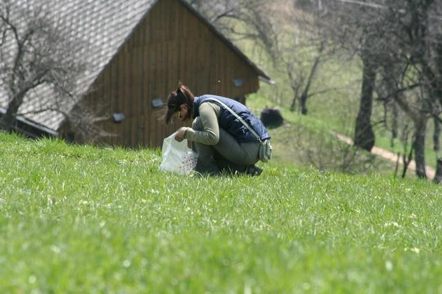 Govejek, Osolnik, 17.4.2006 - foto povečava
