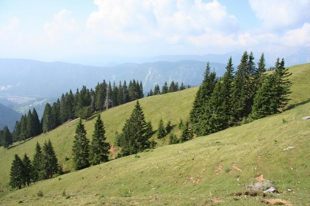 Rožca, Golica, 9.7.2006 - foto