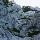 Usodni kamin, levo od z rušjem poraščene gladke stene