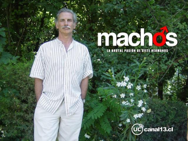 Machos - foto