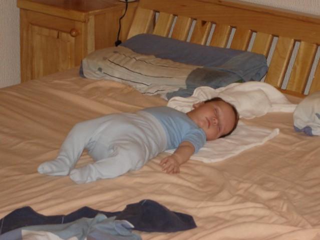 Ajam na veliki postelji  :)