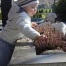 Babici presajam rožice :)