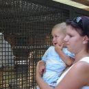 Mami poglej, kako velik ptiček :)