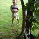 Le kam se je skril ta maček??