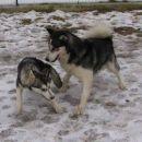 Kim in Nome (na obisku v Ribnici)
