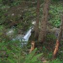 Ob poti proti Konjščici je precej slapov.