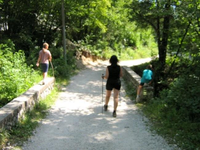 Bohinj, julij 2007 - foto povečava