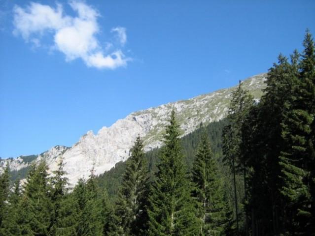 Začetek  grebena  Košute, najdaljšega gorskega grebena v slovenskih alpah.