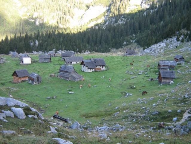 Planina Laz, ena izmed redkih še
