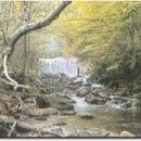 naravni rezervat, pragozd Šumik