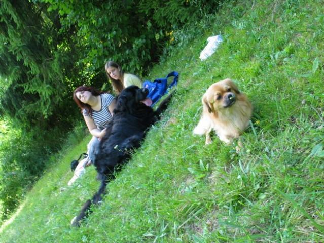 Molže - 29. 7. 2005 - foto