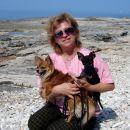 Potepanje s kužki ob obali