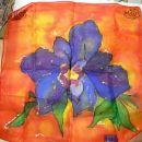 Iris- svila