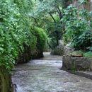 Brioni- Detajl- Sprehod skozi nekdanji peskokop