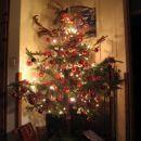 božično drevo 1