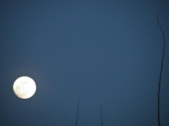 Full moon za konec dneva