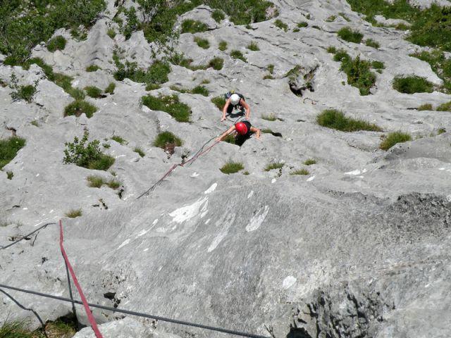 švica - foto